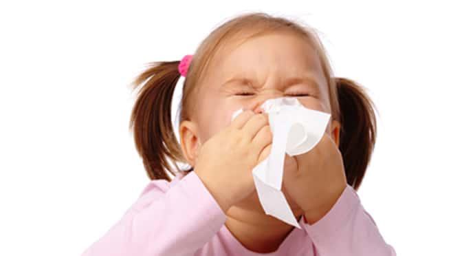 Chiropractic Hickory NC Sneeze